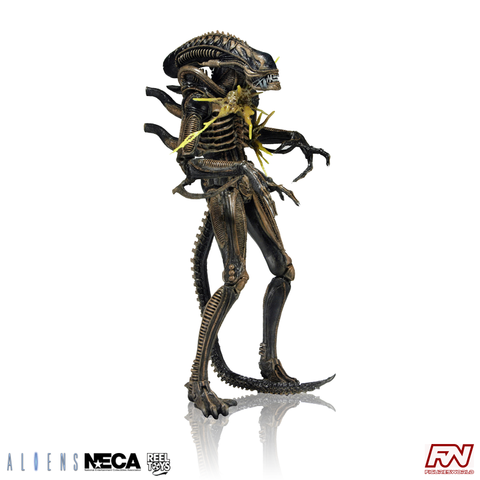 ALIENS SERIES 12: Xenomorph Warrior Battle Damaged (Brown) Action Figure