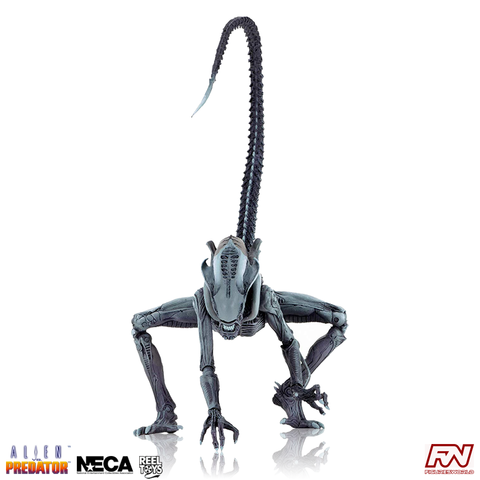 Aliens VS. Predator (Arcade Appearance) Arachnoid Alien 7-Inch Scale Action Figure