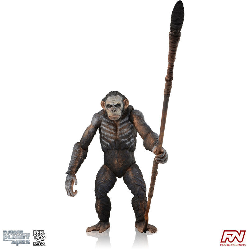 DAWN OF THE PLANET OF THE APES: Series 1 Koba Action Figure