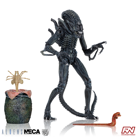 ALIENS (1986): Ultimate Alien Warrior (Blue) 7-Inch Scale Action Figure