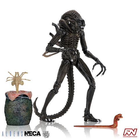 ALIENS (1986): Ultimate Alien Warrior (Brown) 7-Inch Scale Action Figure