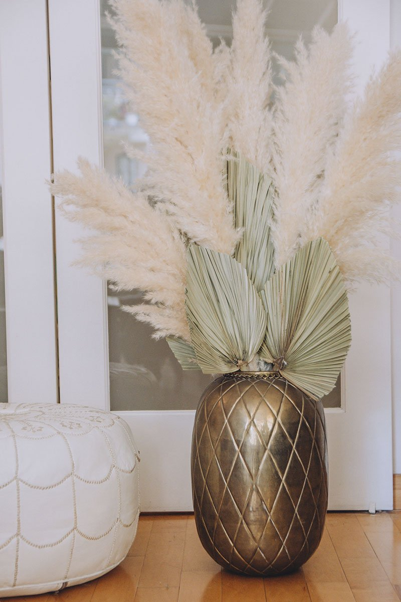 California pampas grass from Frivolous in Vancouver, BC