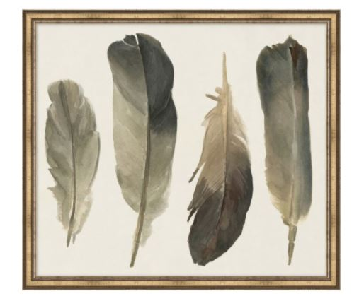 Muted Feathers 1
