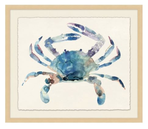 Blue Crab Impression 2
