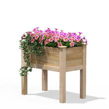 Load image into Gallery viewer, 32 in x 16 in x 31 in Elevated Cedar Wood Raised Garden Bed - Made in USA