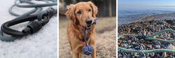 Crag Dog Upcycled Eco-Friendly Dog Leashes and Toys Climbing Rope