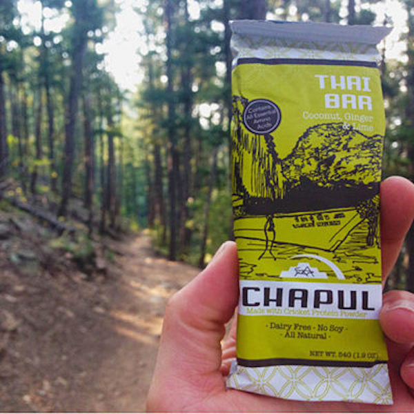 12 new backpacking snacks: bars made of crickets, s'mores