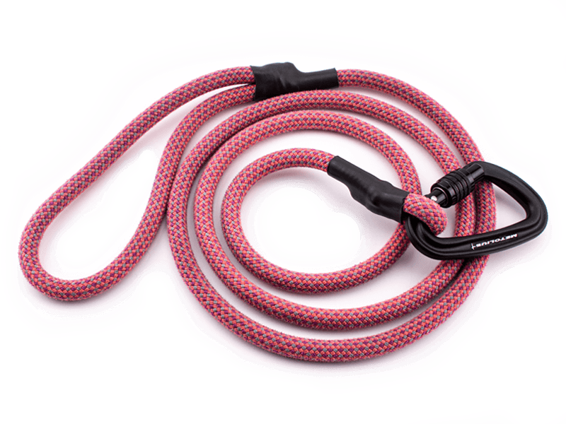Best Outdoor Dog Gear Small and Startup Brands Climbing Rope Leash