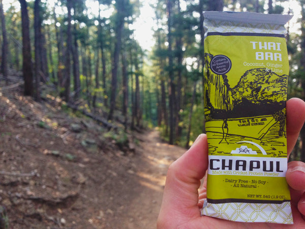 Chapul Cricket Bars Best Backpacking Snacks Garage Grown Gear