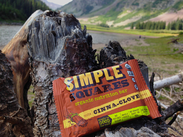 Simple Squares Best Backpacking Snacks Garage Grown Gear