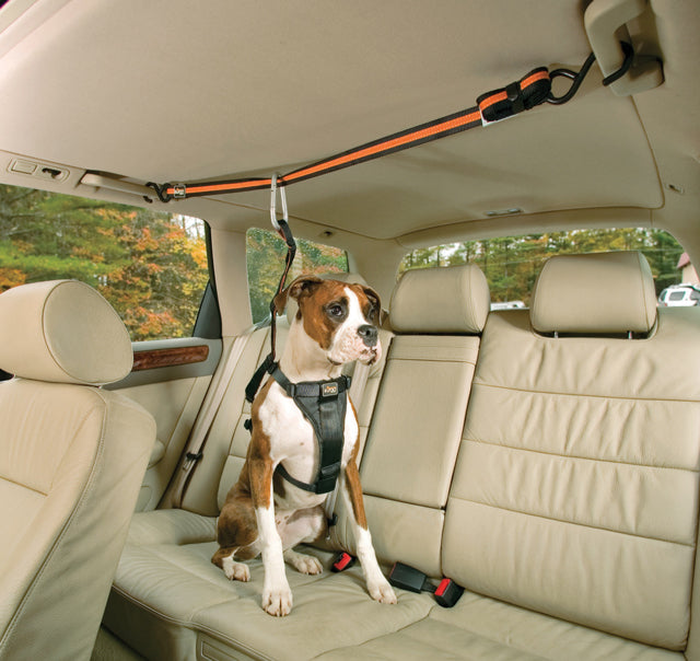 kurgodogproducts_dogtravelaccessories_3