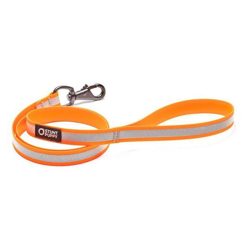 Go Dog Glo™ Dry Leash™ by Stunt Puppy