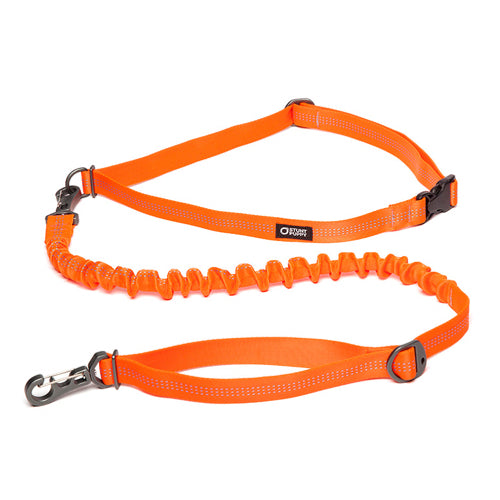 Stunt Runner Leash by Stunt Puppy