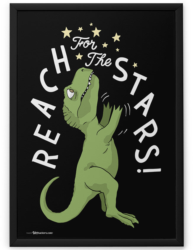 Poster - Reach For The Stars 24x36 / Framed - 2