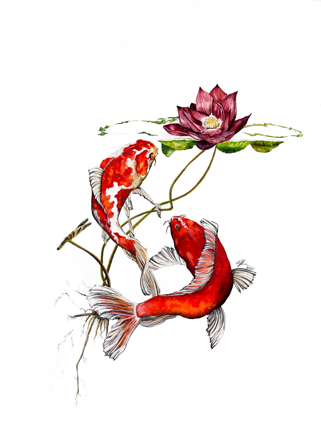 Koi and Lotus Print