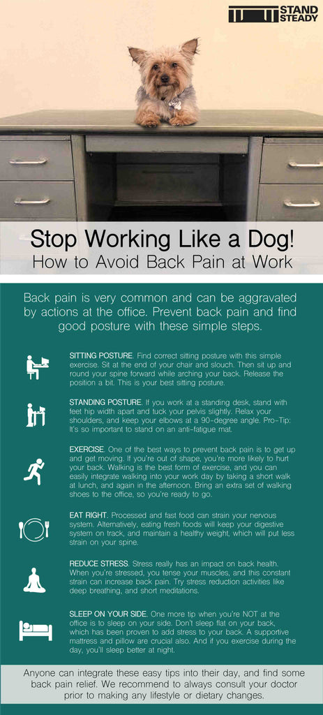 Stop Working Like a Dog at Work