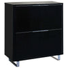 High Gloss Finish Storage Unit