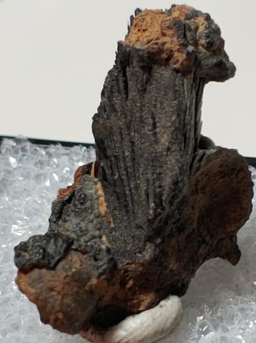 Vivianite from Kerch, Crimea, Russia. 2.2 cm #4052