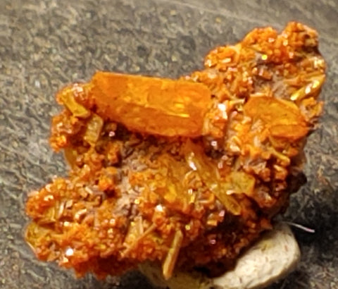 Wulfenite and Mimetite from Rowley Mine, Arizona. 1.5 cm #5042