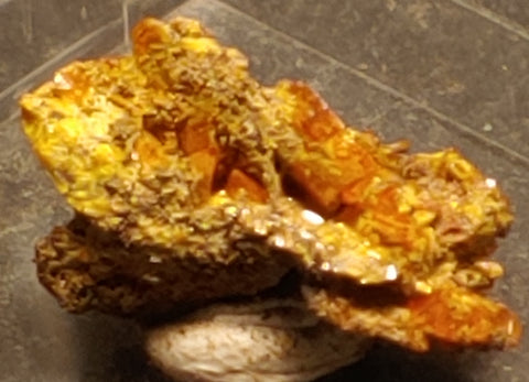 Wulfenite from Red Cloud Mine, Arizona. Stock 1.6 cm #5233