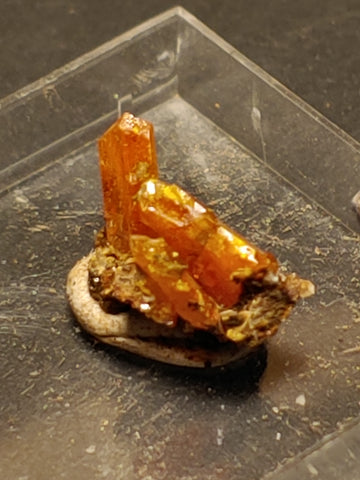 Wulfenite from Red Cloud Mine, Arizona.  1.2 cm #5257
