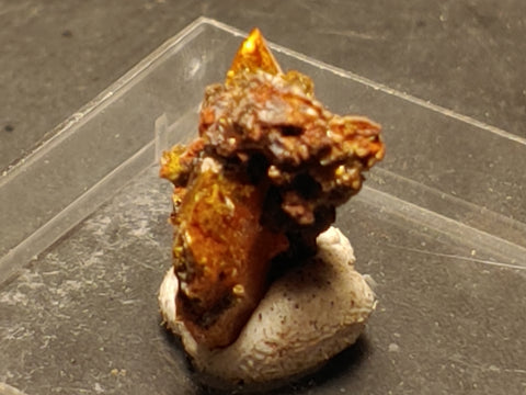Wulfenite from Red Cloud Mine, Arizona.  2.4 cm #5267
