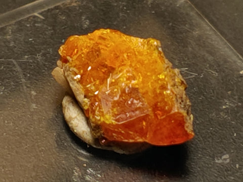 Wulfenite from Red Cloud Mine, Arizona.  1.2 cm #5268