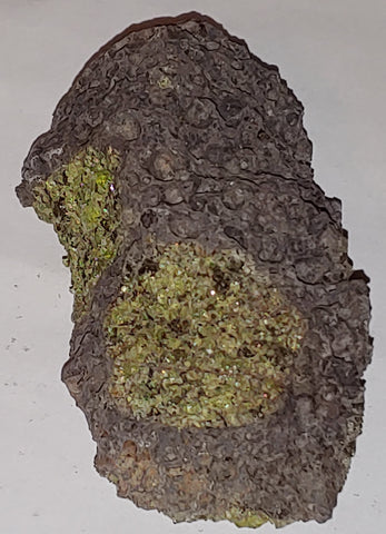 Peridot from San Carlos Reservation, Arizona. 10 cm #336
