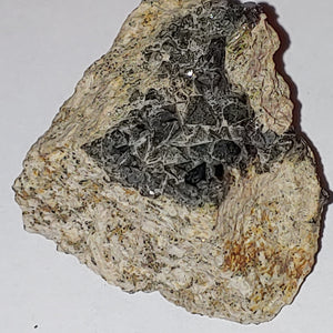 Magnetite from Imilchil, Morocco. 5.3 cm #3526