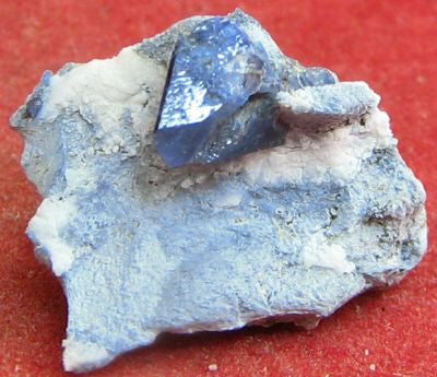 Benitoite Crystal from Gem Mine, California. 2.1 cm. #4219