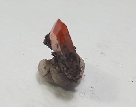 Wulfenite from Red Cloud Mine, Lapaz County Arizona. Stock #459sl