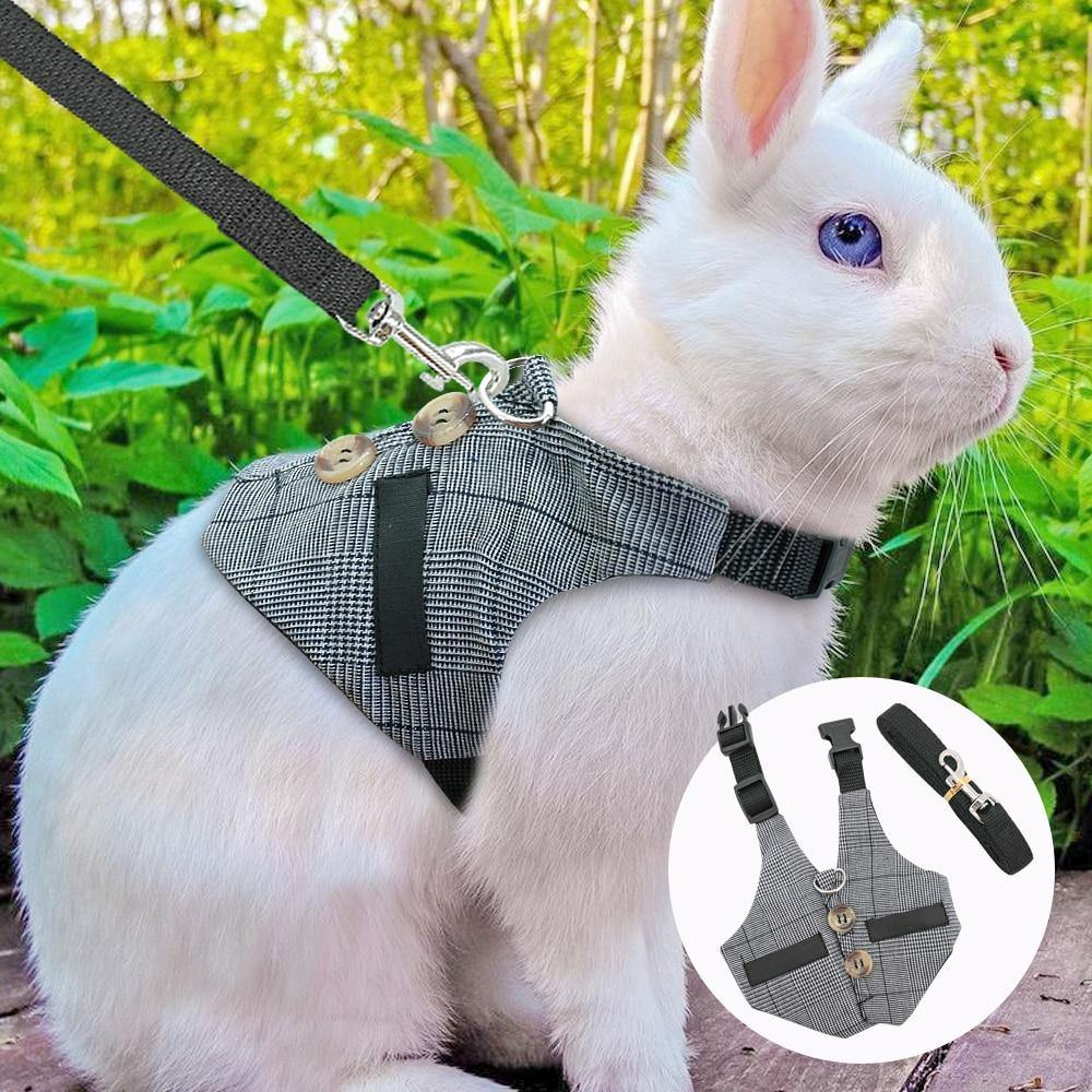 Cute Rabbit Hamster Harness Lead Leash Small Dog - 4PawShop