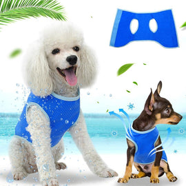 Summer Dog Cooling Vest Harness Pet Mesh Cool Vest - 4PawShop