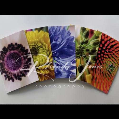 Flower Greeting Cards - Macro Photography - Pack of 5 Designs