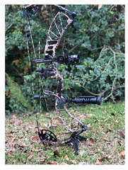 Bow Stand