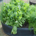 Garden Bed™ I optimalisere din plantasje!