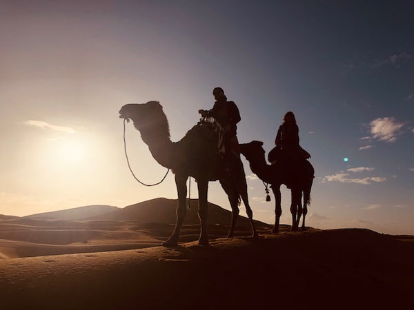 Seek Journeys: Sara in Morocco