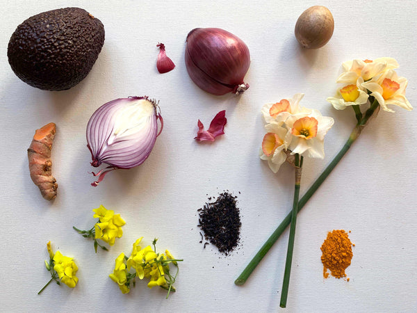Seek DIY: Natural Dyes at Home
