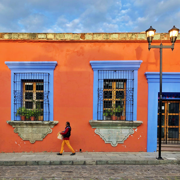 Seek Journeys: Falling in Love in Mexico