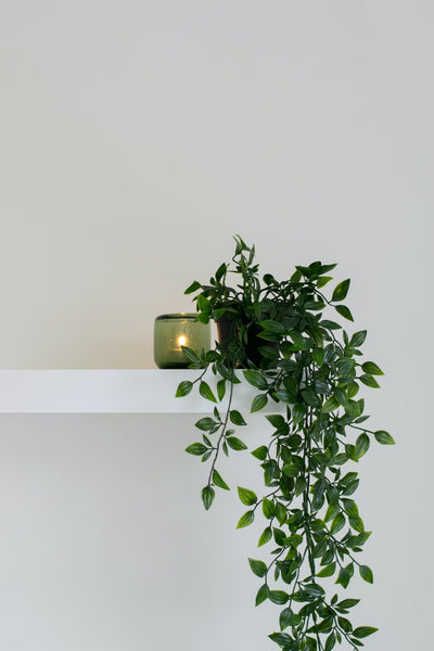 creeping plant vine on a small pot beside a candle on a floating shelf