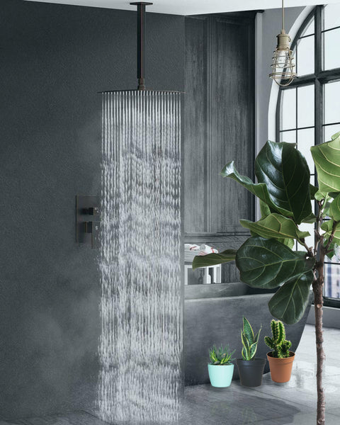 house plants with oil rubbed shower set from SR Sunrise