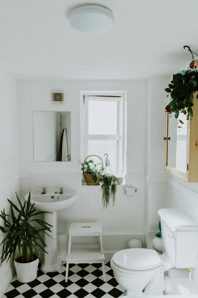 white bathroom with checkeboard floor and bathroom plants