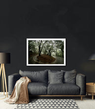 Load image into Gallery viewer, Misty forest