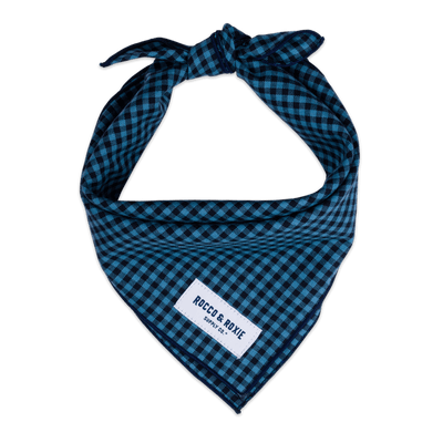 Blue & Navy Gingham (Small Print)