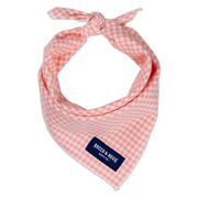 Peach Gingham (Small Print)