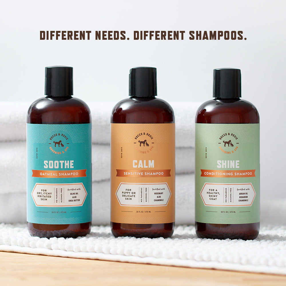 Shine Conditioning Shampoo