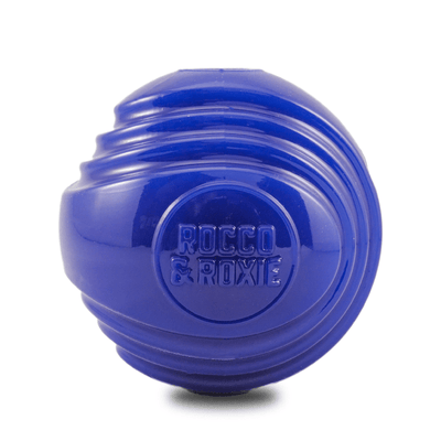 Fetch-able Fun Dog Toy Ball