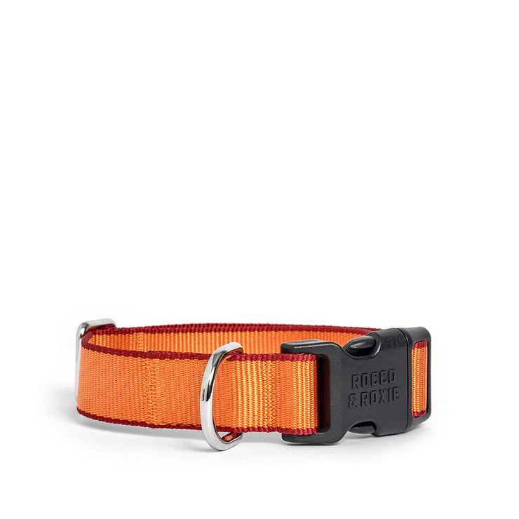 Orange & Red Collar
