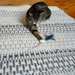 Cat Playing with Interactive Wand Toy
