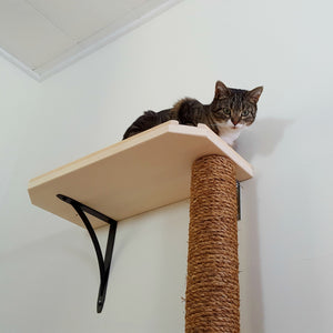 70 Inch Cat Tree Climbing Pole with Optional Shelf